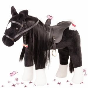 Pferd Rappe